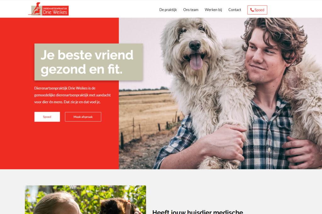 Webtekst voor Drie Weikes Oud Gastel - Conntext