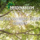 Websitetekst Herdenkboom Oudenbosch - Conntext