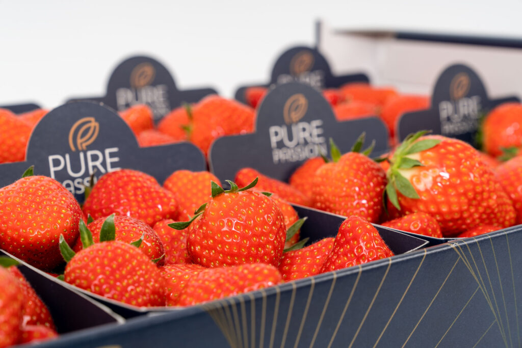 Productfoto Pure Passion Aardbeien - Conntext